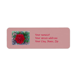 Beautiful Red Rose Return Address Label
