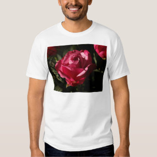 Beautiful red rose t shirt