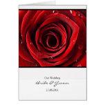 Beautiful Red Rose Wedding Card Invite -White