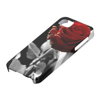 Beautiful Red Rose with Black & White background iPhone 5 Cases