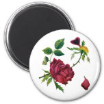 Beautiful Red Roses Done in Crewel Embroidery 6 Cm Round Magnet