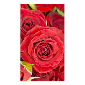 Beautiful red roses pack of standard business cards