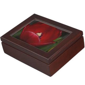 Beautiful Red Tulip Keepsakes Memory Boxes