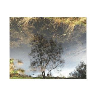 Beautiful Reflection Photography Tree Art Canvas