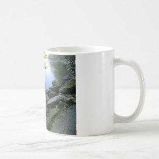 Beautiful River Bank Scene Coffee Mugs