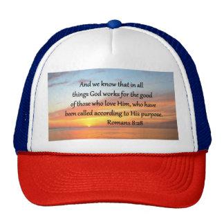 BEAUTIFUL ROMANS 8:28 SUNRISE PHOTO CAP