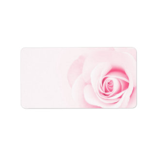 Beautiful romantic pink rose flower floral label