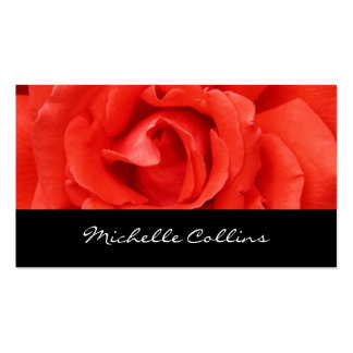 Beautiful romantic red rose personal profile pack of standard business cards