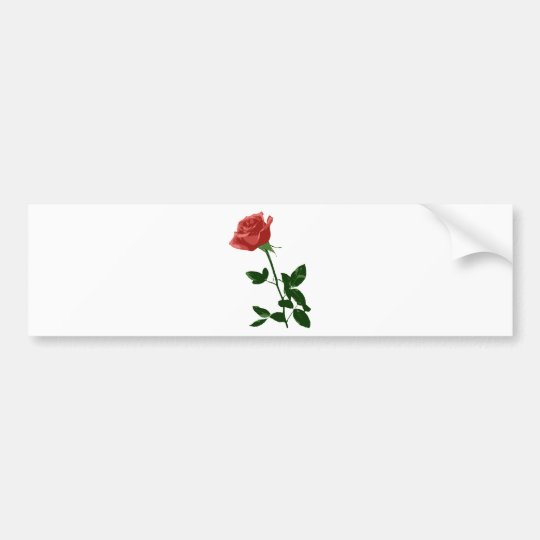 Beautiful Rose Flower Bumper Sticker