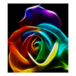 Beautiful Rose of Colours No3 Poster