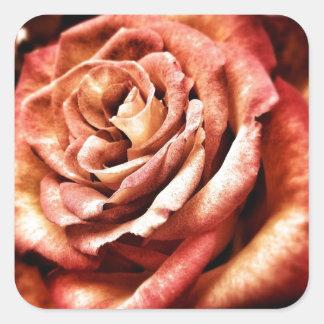 Beautiful Rose Square Sticker