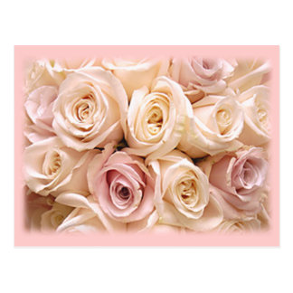 BEAUTIFUL ROSES by SHARON SHARPE by SHARON SHARPE Postcard