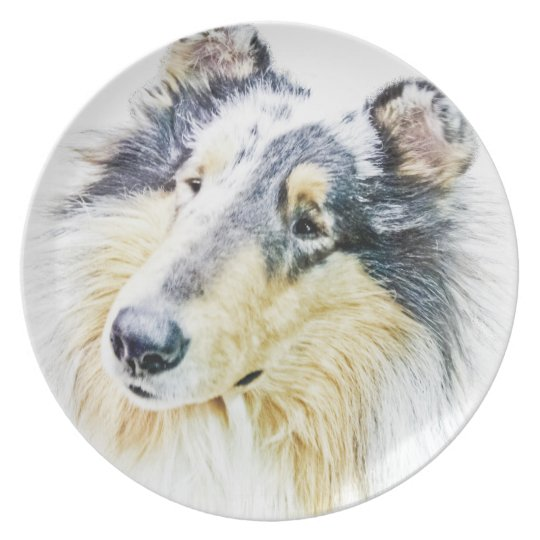 Beautiful Rough Collie dog art Plate