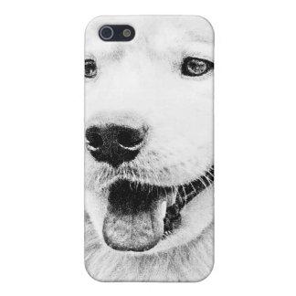 Beautiful Samoyed dog art Cover For iPhone 5/5S