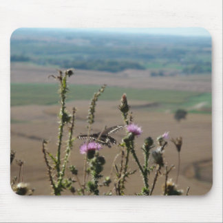 Beautiful Scenic View in Wisconsin Mouse Pad