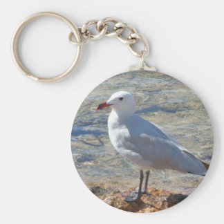 Beautiful Seagull - Keychain