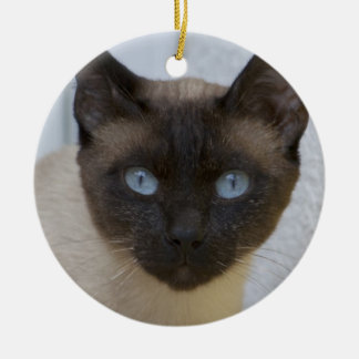 Beautiful Seal Point Siamese Cat Christmas Ornament