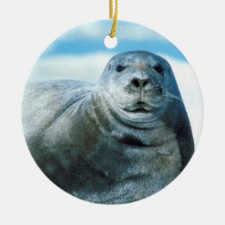 Beautiful Seal Round Ceramic Decoration