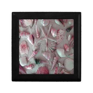 Beautiful Seashells Gift Box
