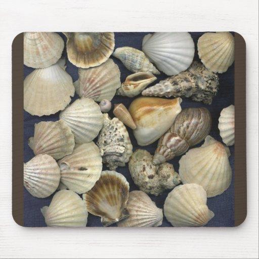 Beautiful Seashells Halima Ahkdar 2006 Mouse Pad