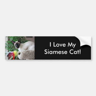 Beautiful Siamese Cat Playing With Toy Bumper Sticker