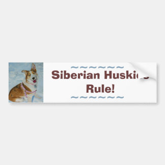 Beautiful Siberian Husky in Snow Bumper Sticker