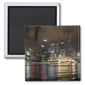 Beautiful Singapore At Night. Magnet