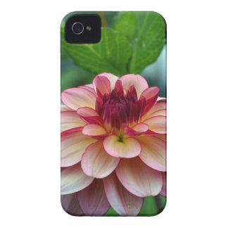 Beautiful single pink dahlia flower Case-Mate iPhone 4 case