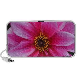 Beautiful single pink dahlia flower mp3 speaker