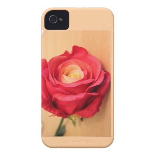 Beautiful Single Rose on iphone iPhone 4 Covers
