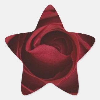 Beautiful Single Up Close Red Rose Star Sticker