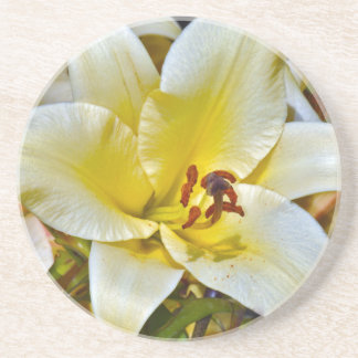 Beautiful single yellow lily beverage coasters