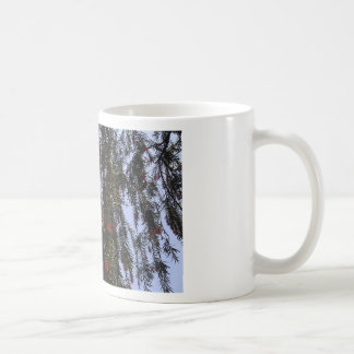Beautiful small red flowers on a tree branch basic white mug
