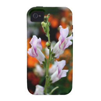 Beautiful Snapdragon Flower Design Vibe iPhone 4 Cover