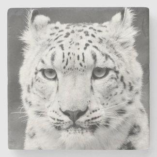 Beautiful Snow Leopard Black and White Portrait Stone Coaster