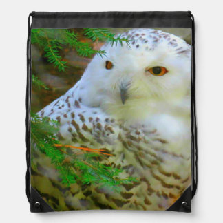 Beautiful Snowy Owl Drawstring Backpack