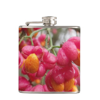Beautiful Spindle Blossom / Fruit Flask