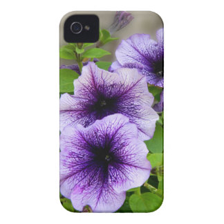 Beautiful spring flowers purple iPhone 4 cover