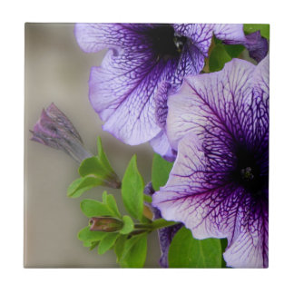 Beautiful spring flowers purple tile