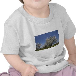 Beautiful Spring Trees Tshirt