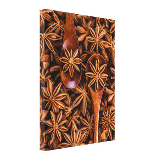 Beautiful star anise spices canvas print