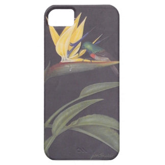 Beautiful strelitzia iphone case