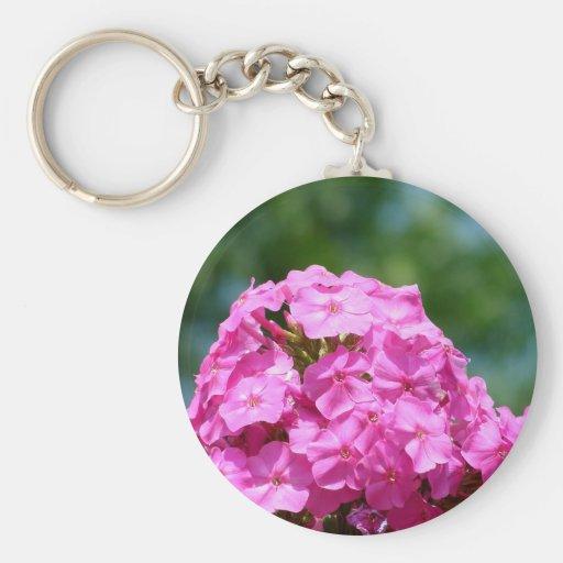 Beautiful summer flowers photo pink purple phlox keychains