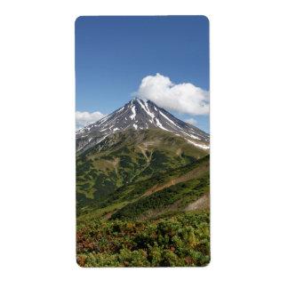 Beautiful summer volcano landscape in Kamchatka