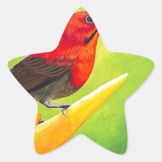 Beautiful Sunbird Painting!  NZ Artist Elena Esina Star Sticker