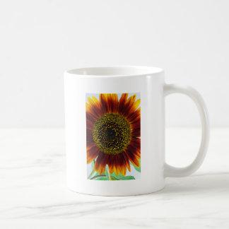 beautiful sunflower basic white mug