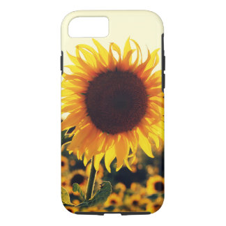 Beautiful Sunflower Nature Flower iPhone Case