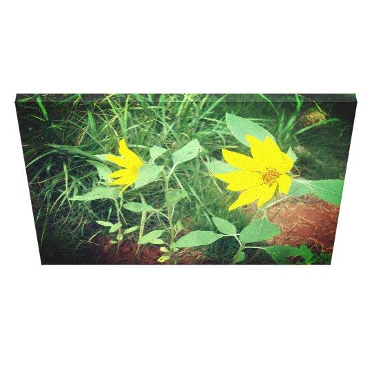Beautiful Sunflower Photo Print