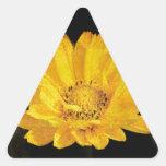 Beautiful Sunflower with Dark Brown Background Triangle Sticker