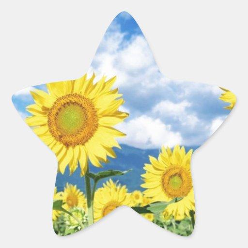 Beautiful Sunflowers Star Sticker
